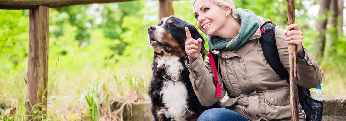 Trouver une personne pour promener son chien